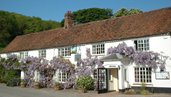 Picture of White Horse accomodation
